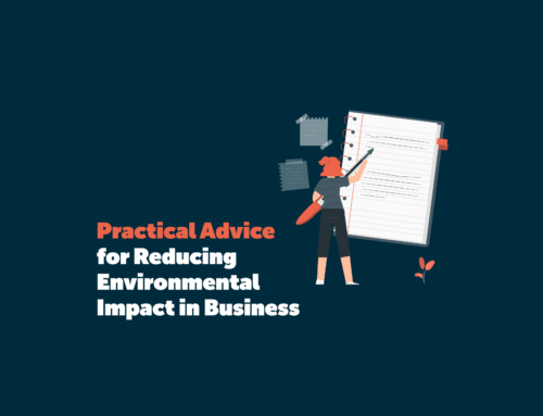Practical Advice for Reducing Environmental Impact in Business